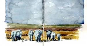 Carnet de Voyages di Roberto Malfatti KENYA 5