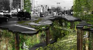 """Sole e verde per abitare spazi sotterranei a New York. """"Ricette"""" per la sopravvivenza – di Francesca Capobianco"""