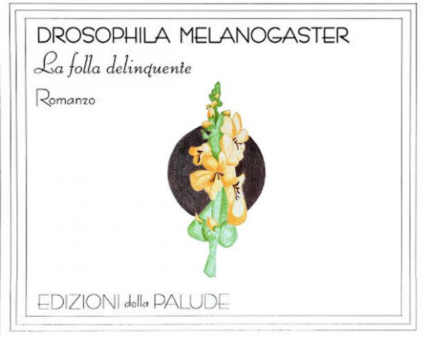 Interno 14: Drosophila Melanogaster di Massimo Napoli